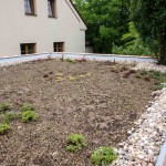 Extenzivní střešní zahrada_po výsadbě